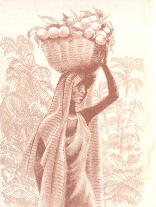 Изображение к книге Африка грёз и действительности (Том 1)