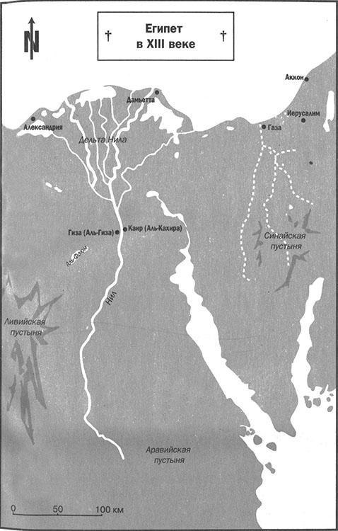 Изображение к книге Амулет воинов пустыни