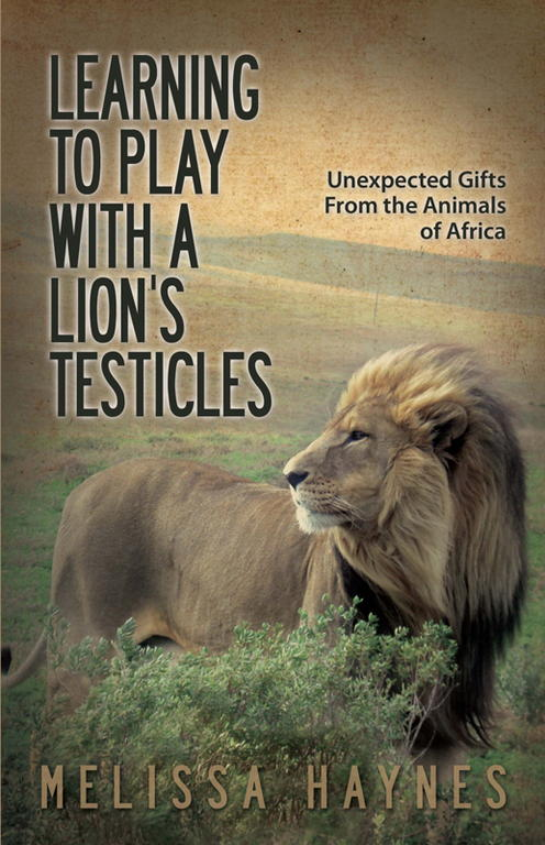Обложка книги Learning to Play with a Lion's Testicles