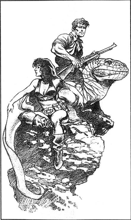 Изображение к книге Айронкестль