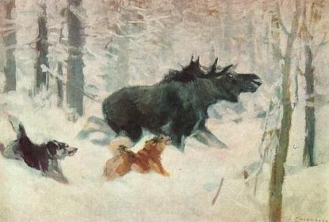 Изображение к книге Наши северные собаки. Введение в лайковедение